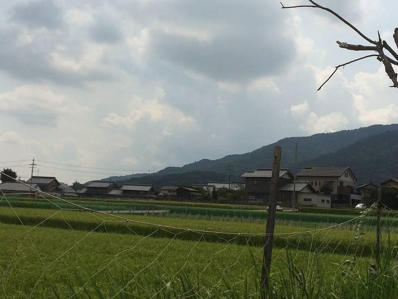 現地から見た南東側の風景