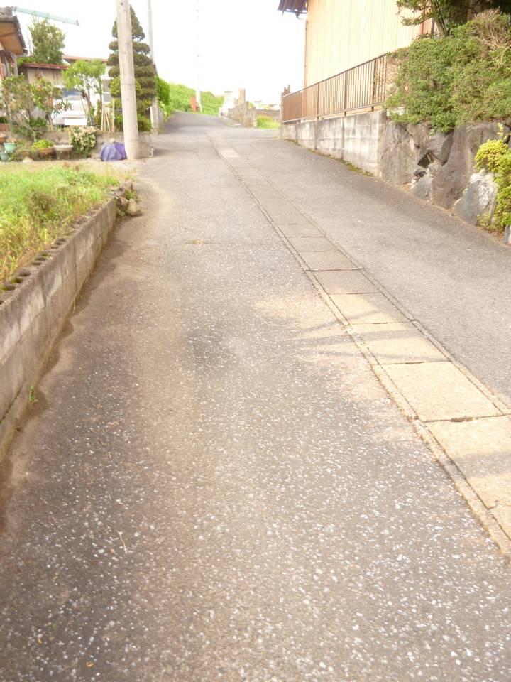 南側から前面道路写真