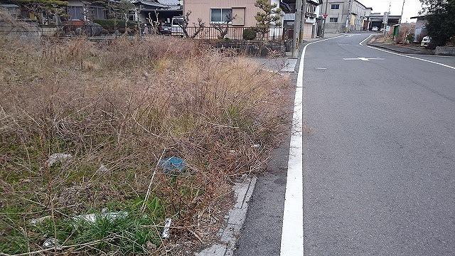 2016/02/01/ 撮影