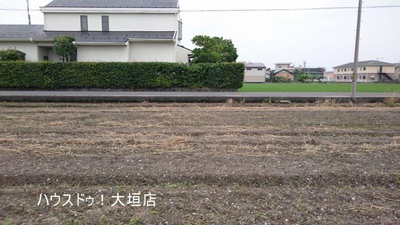 2016/06/22 撮影