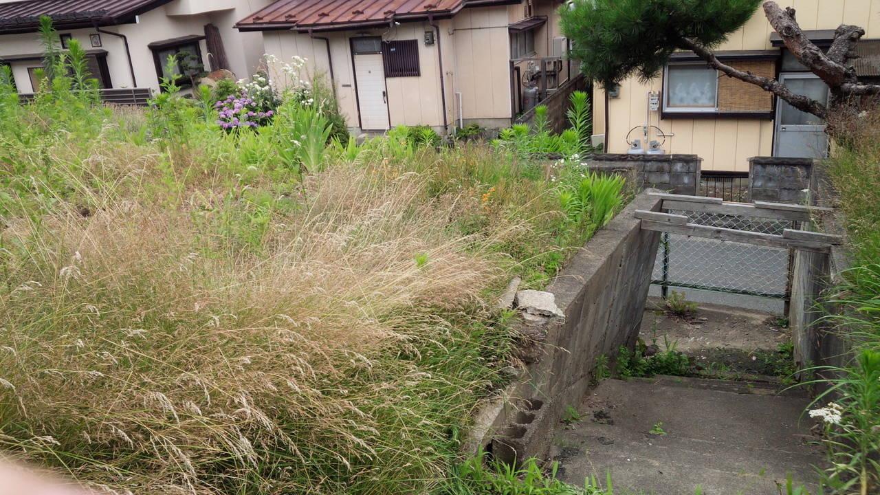敷地前面はお庭が広がっています。