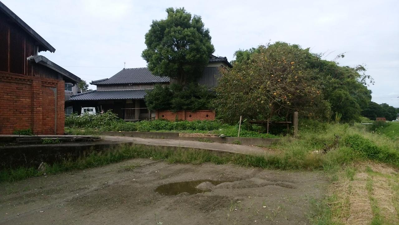 倉庫横の田から見た外観