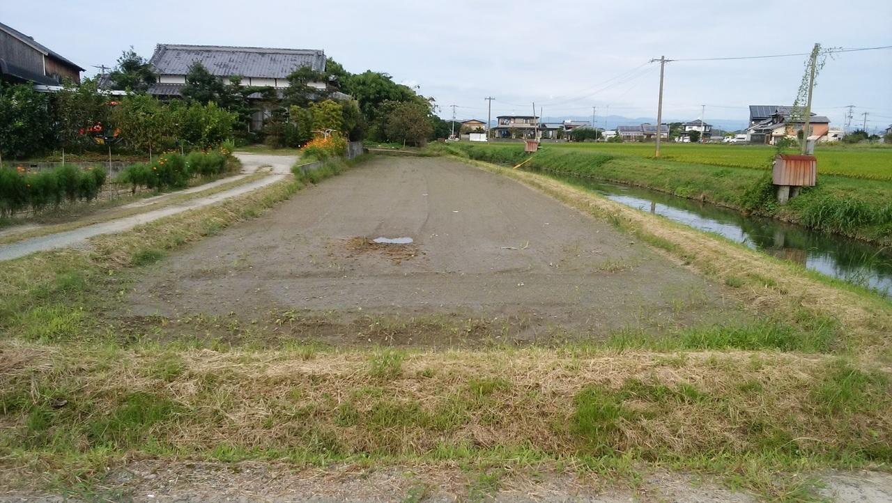 田の全貌。 道路まで続きます。 将来、敷地までの道路としても利用出来ます。
