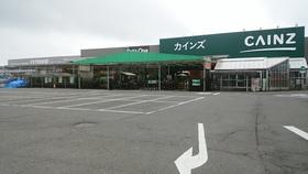 カインズまで1300m(徒歩16分)