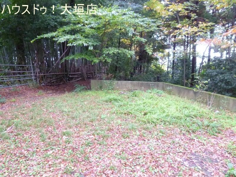 2016/11/15 撮影