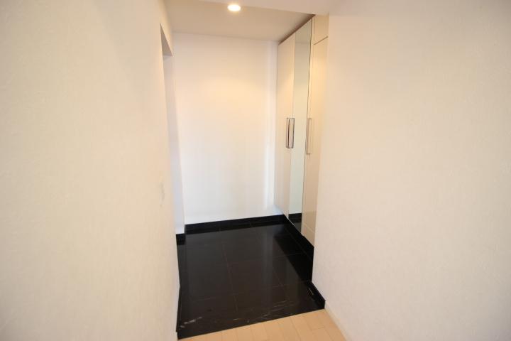 大きめの玄関収納付きです 玄関がスッキリ片付きます