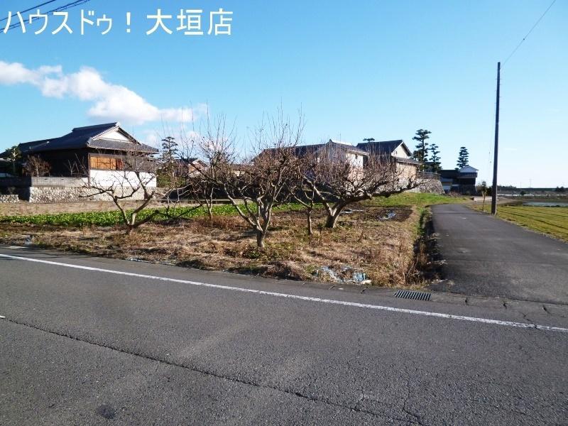2017/01/25 撮影