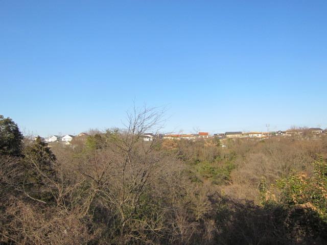 ウッドデッキからの眺望