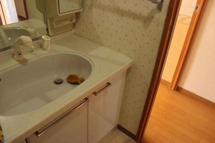 大きめの洗面台を設置 朝の身支度はこちらで