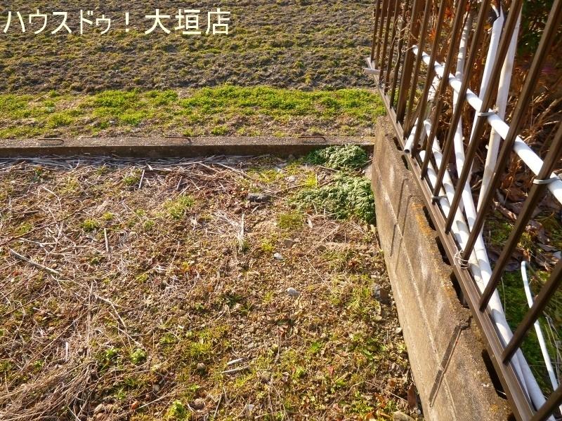 2017/02/16 撮影