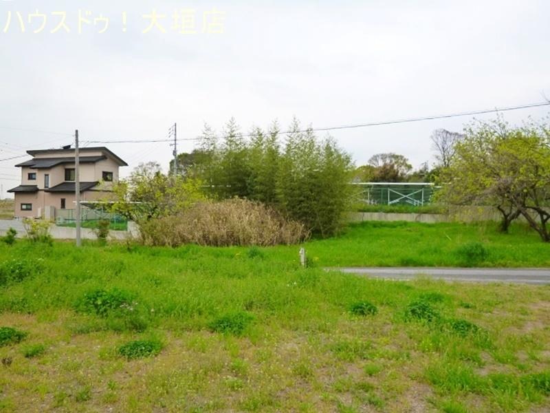 2017/04/21 撮影