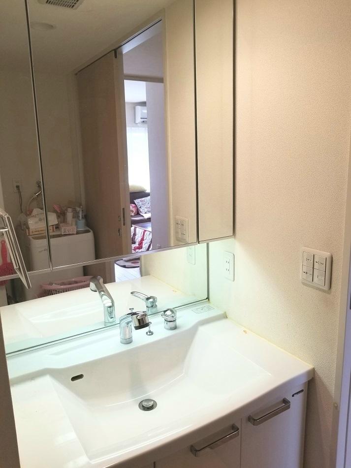 3面式で鏡の裏にも収納が付いております