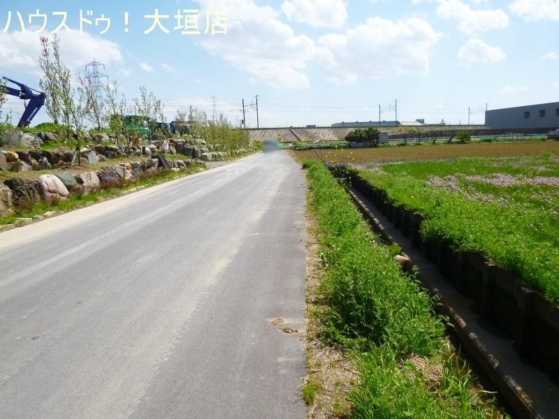 2017/08/02 撮影