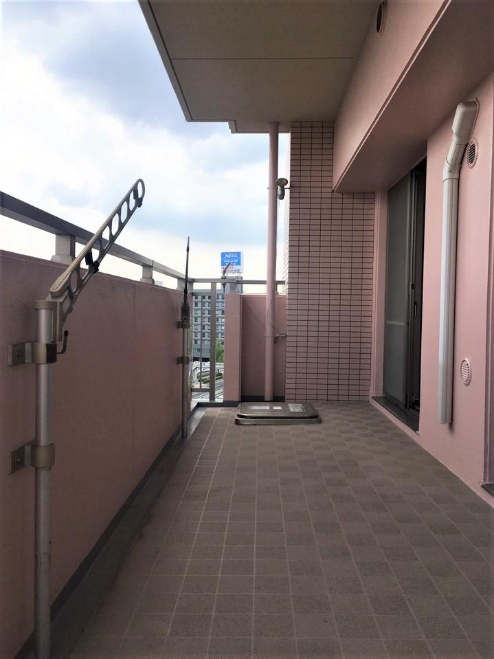 29.7.13 12時頃撮影 天候:晴れ