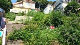 【外観写真】 東京湾一望・上下水道完備です。