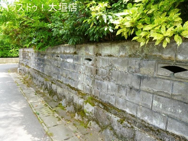2017/07/08 撮影