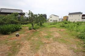 【外観写真】 土地面積 375.31坪 現況渡し 建築条件なし