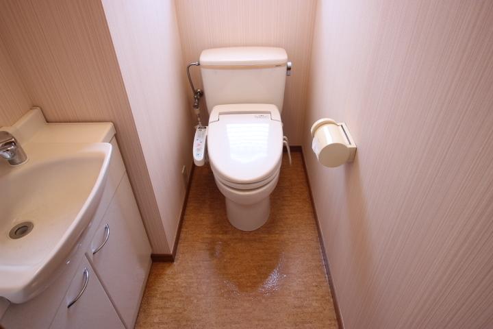 トイレには手洗い場があります
