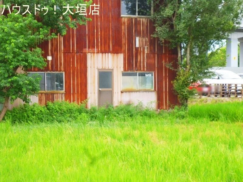 2017/09/04 撮影