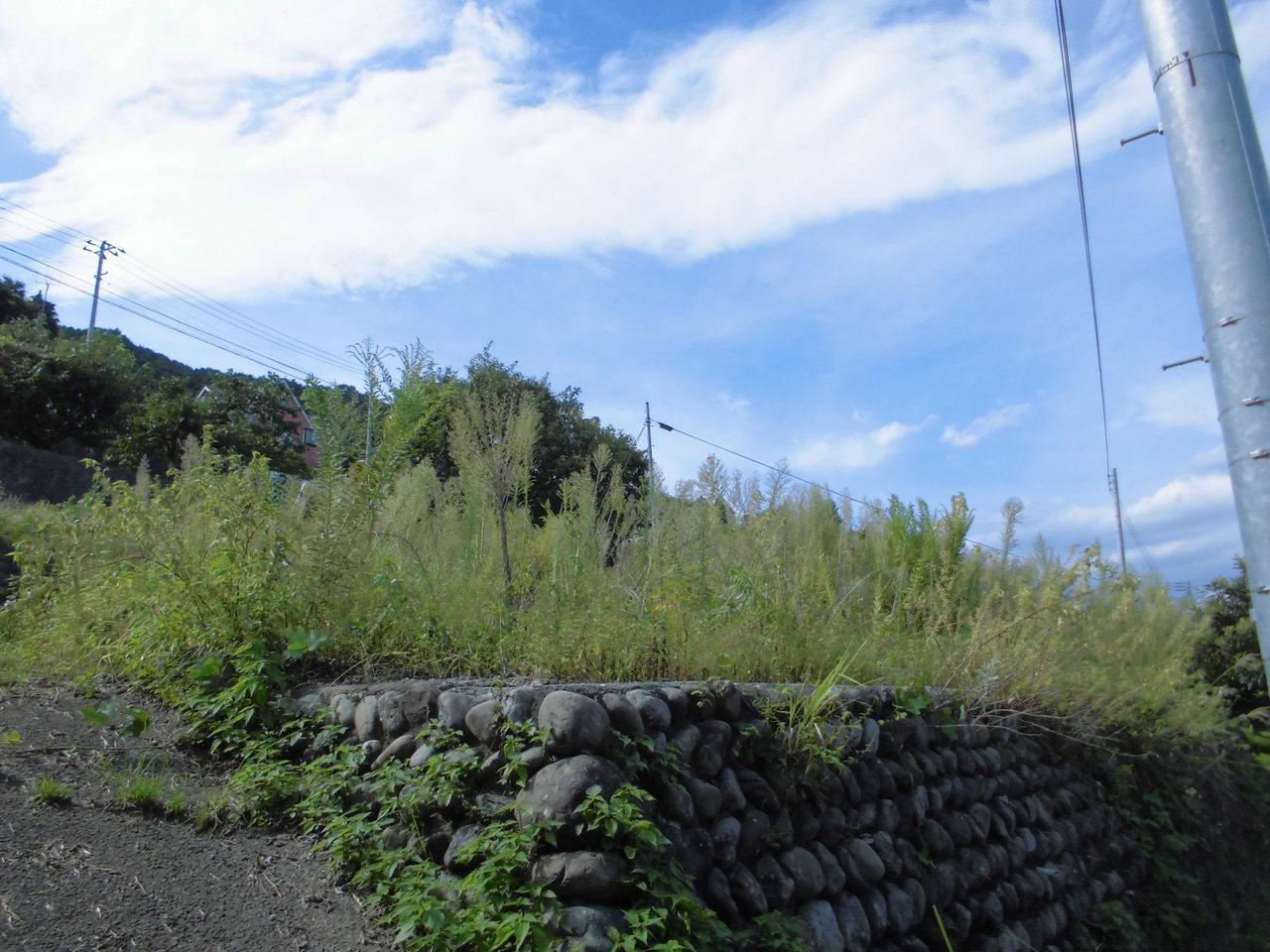 富士宮市大中里の、 売土地です。