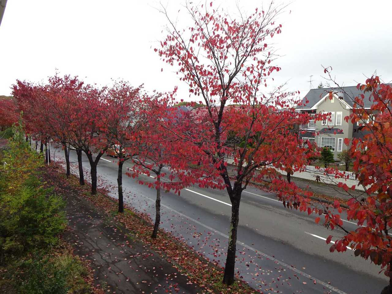千歳市柏陽の中古戸建です。泉沢中央通、建物背面にあります。