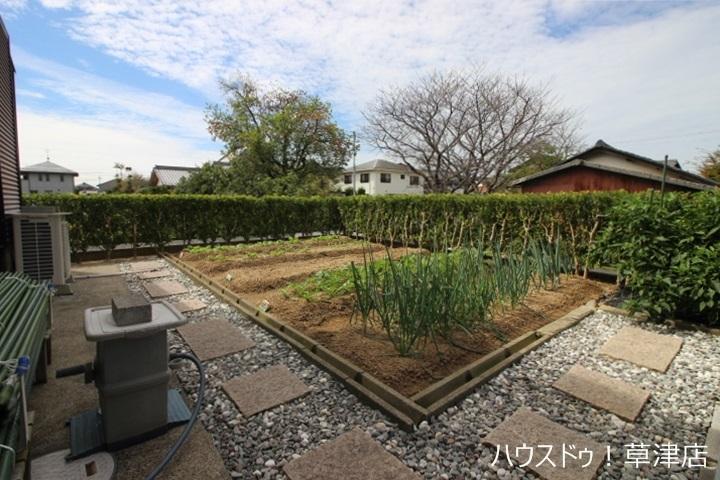 家庭菜園の出来るスペースがございます。趣味のひとつとして、やってみませんか?