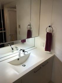 手入れのしやすい洗面ボウル。鏡は3面鏡タイプで裏側は収納になっています。