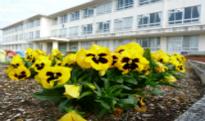 【小学校】西小学校