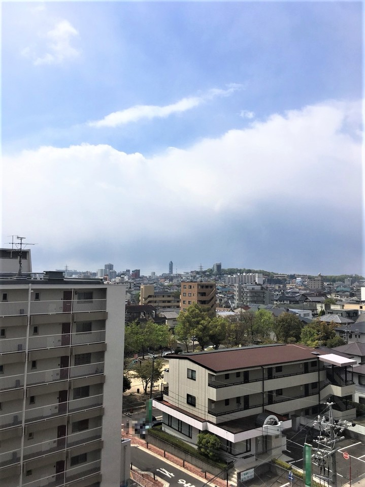 30.4.8 11時頃撮影 天候:晴れ