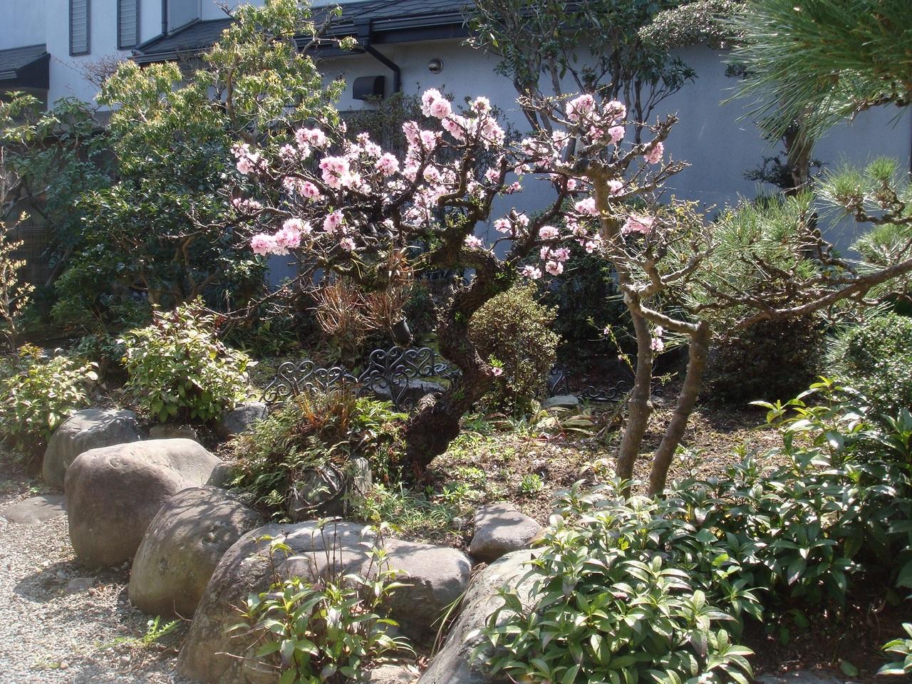 富士宮市山本の、 中古戸建物件です。