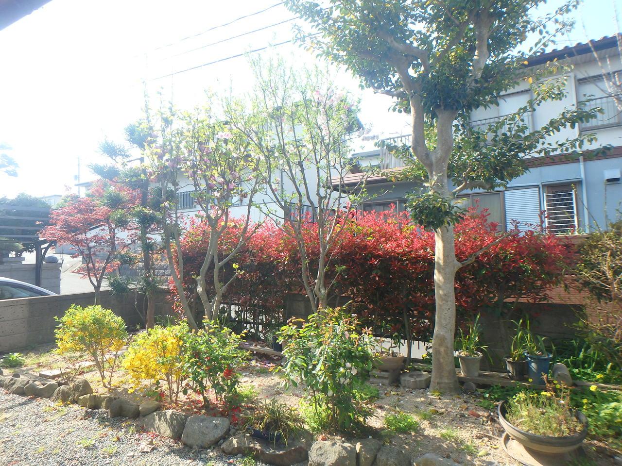 縁側からの眺めです!家庭菜園やガーデニング、お子様の遊び場にもなる広い庭付です♪