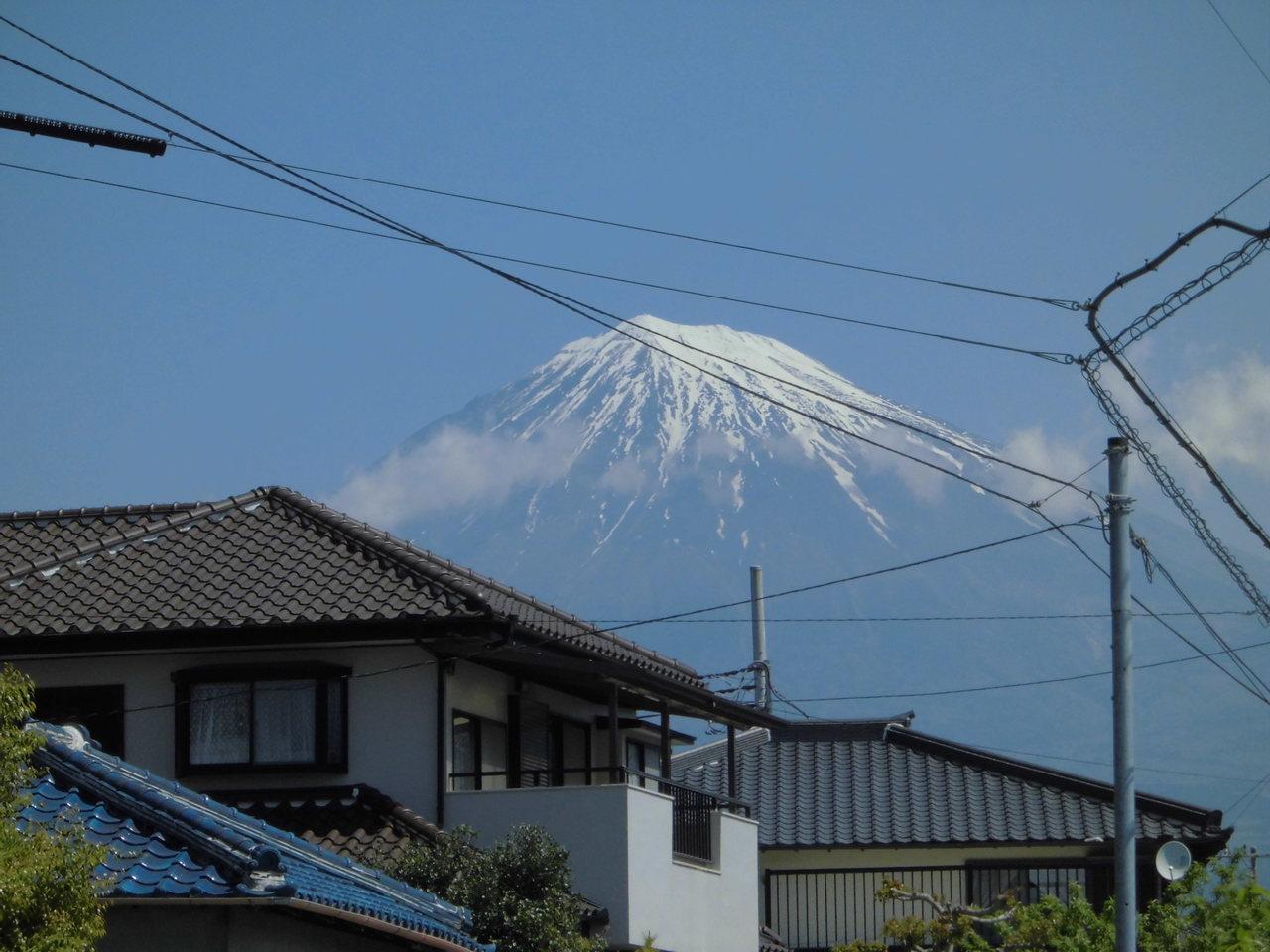 富士山が、見えます。