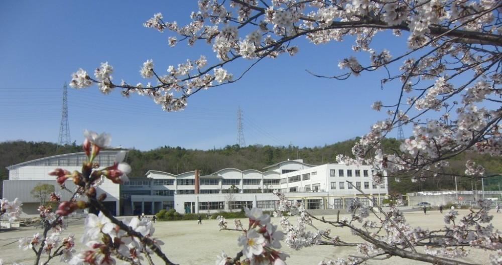 【中学校】陶都中学校