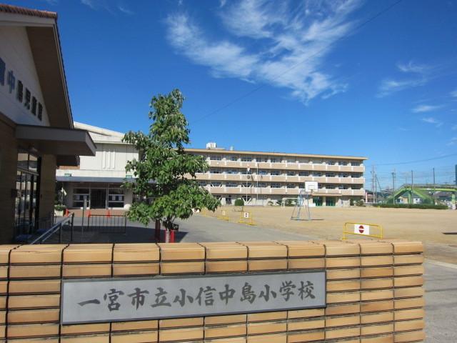 【小学校】小信中島小学校