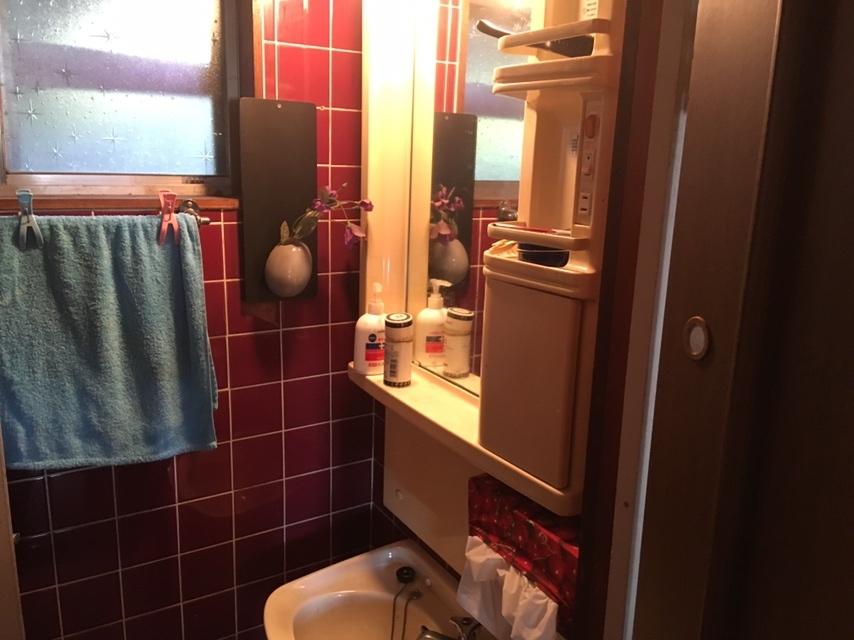 洗面所には窓があるので換気もできます
