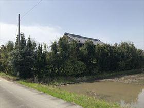 愛西市鵜多須町中道 建築条件なし土地
